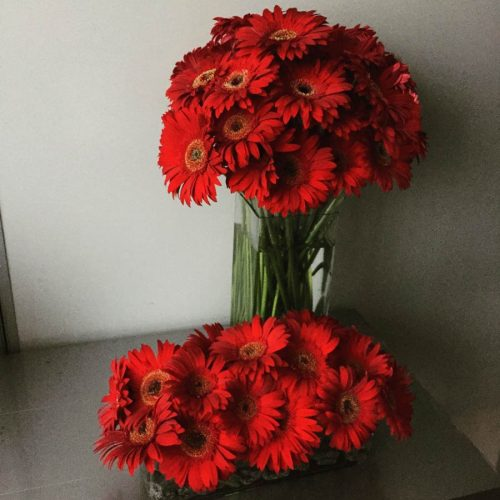 color & company - Floral Arrangement - RED